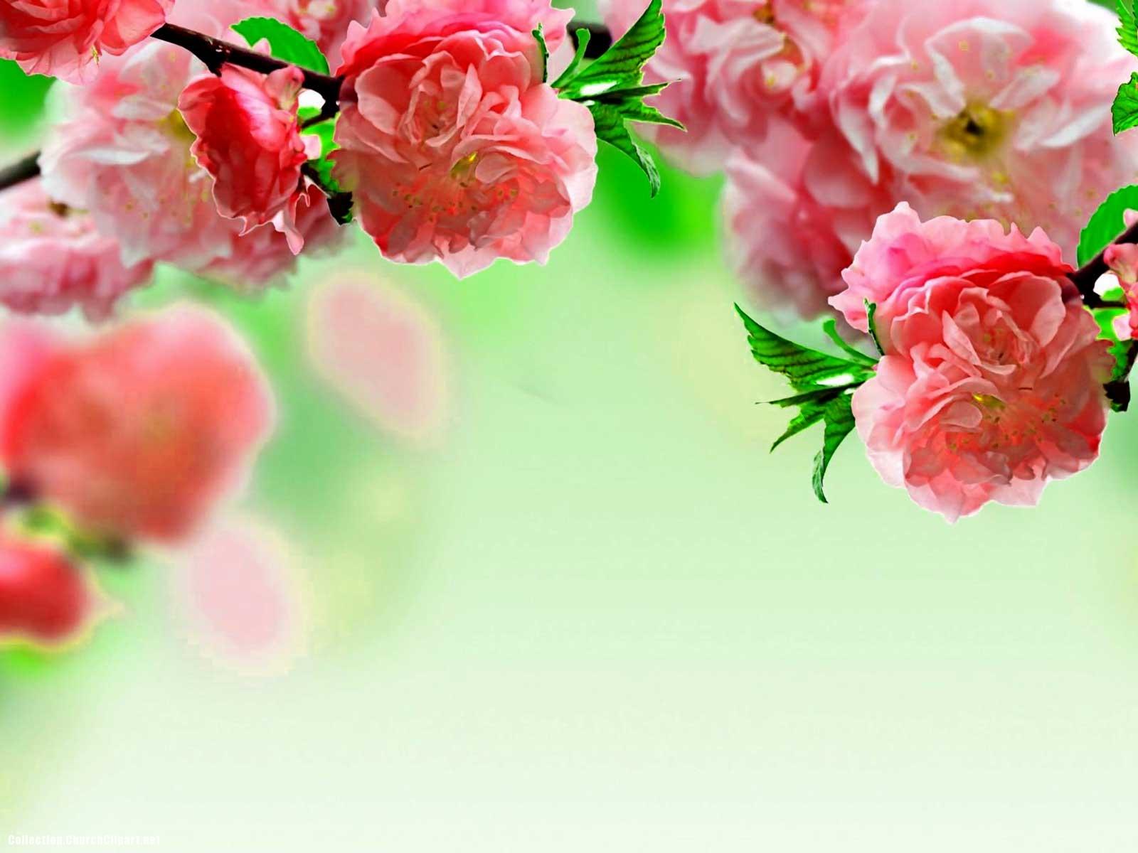 powerpoint flower template - Vatoz.atozdevelopment.co
