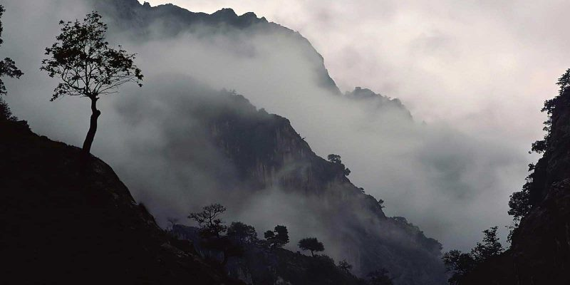 Misty Nature Background