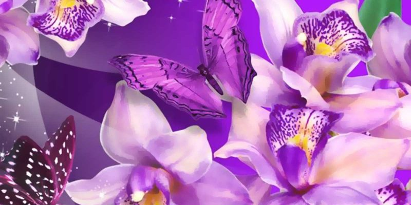 Purple Butterfly And Flower Background
